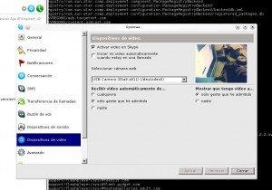 skype-webcam_recorte
